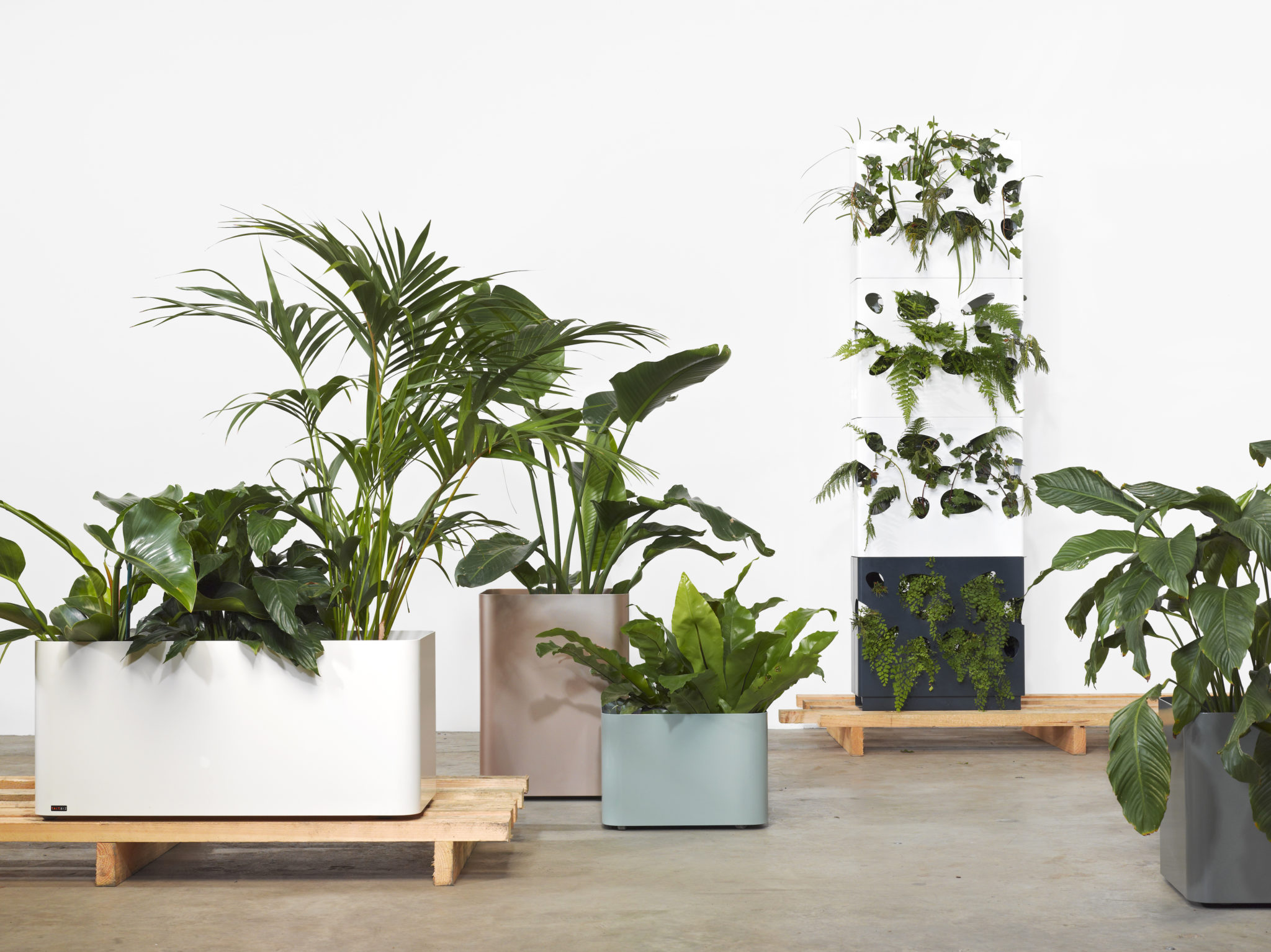 It's the smooth curves of this series of planters that give The Softline Collection its name.